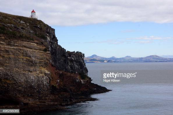 Taiaroa Head lighthouse Otago Peninsula Dunedin Otago New Zealand